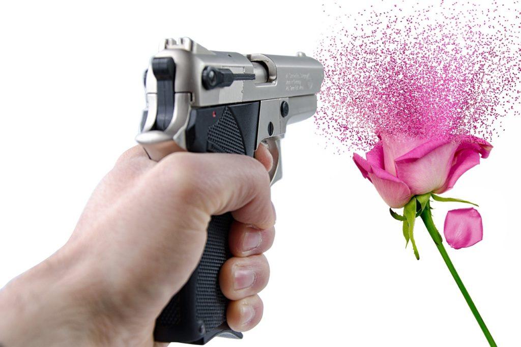 銃で花を撃つ